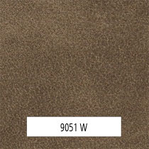 9051 W